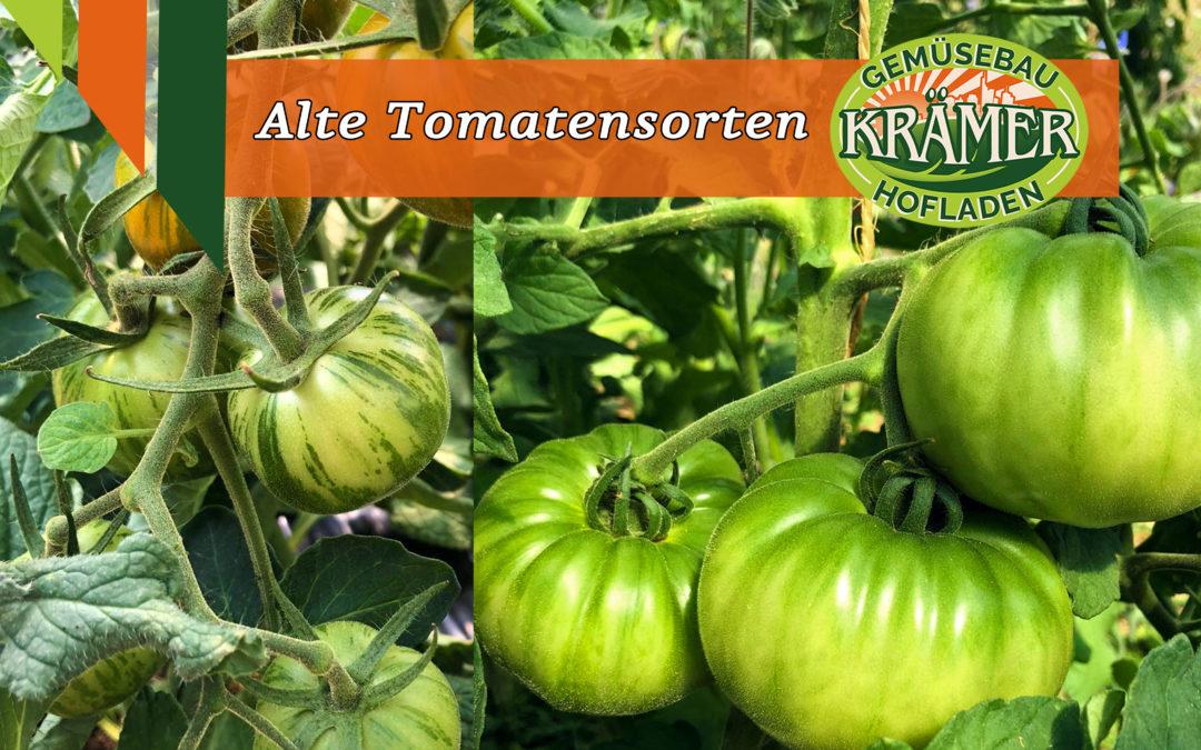 Horst Krämers alte Tomatensorten