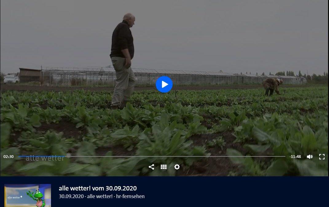 Beitrag im hr-Fernsehen, 30.09.2020