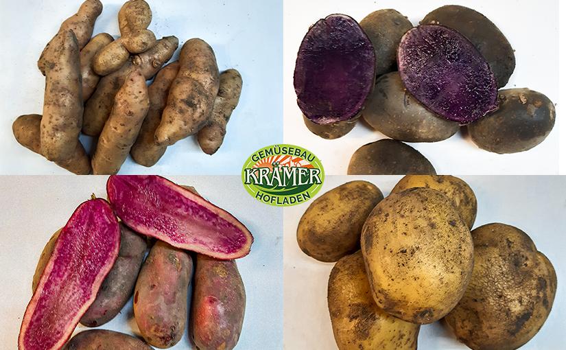Horst Krämers besondere Kartoffelsorten